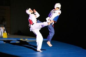 150208_09_taekwondo_budoschule_wiesbaden_011